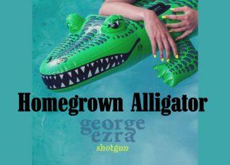 homegrown alligator Shotgun George Ezra Line Dance