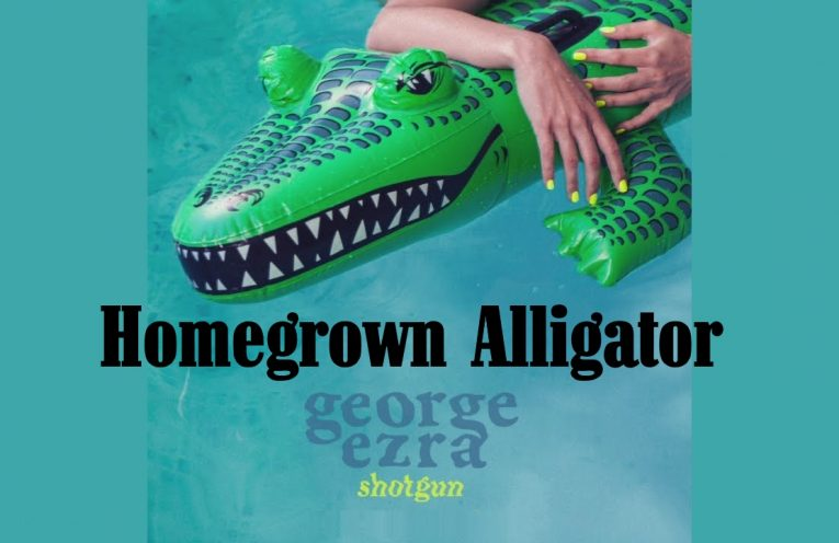 homegrown alligator Shotgun George Ezra Line Dance